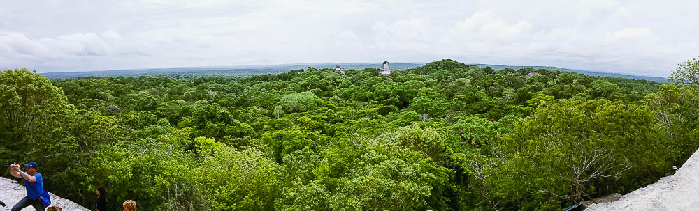 panoramic view of Tikal, from the tallest Temple IV